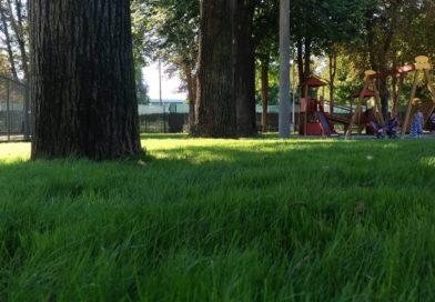 Le aree verdi in città sono aumentate e migliorate